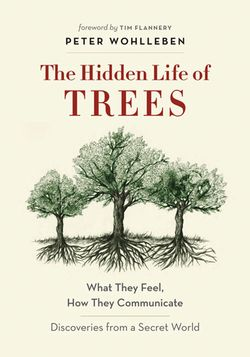 Once you've absorbed the concepts of this surprising book, you might never approach a walk in the woods in the same way again.