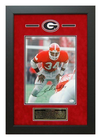 Herschel Walker Autographed 11x14 - Georgia Bulldogs Backfield Picture Framed #HerschelWalker #UGA #GeorgiaBulldogs #Autographs