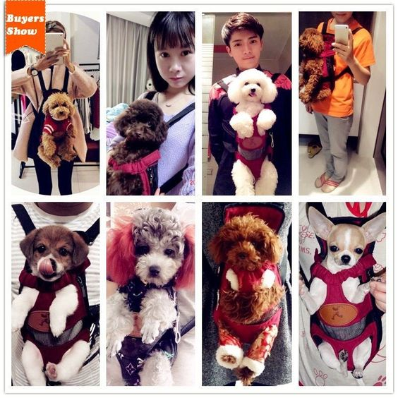Bag Carrier Chest pack Dog Pet Net Tote Puppy Cat Front TravelShoulder Canvas in Pet Supplies, Dog Supplies, Carriers & Totes   eBay