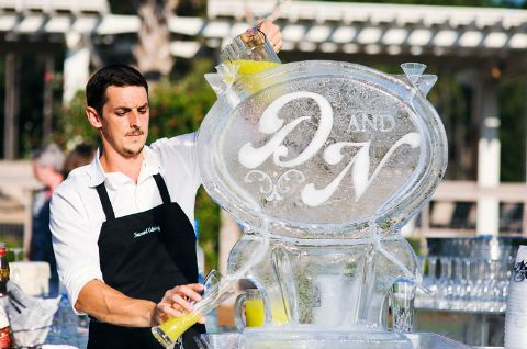 Ice Baby On Itsabrideslife Sculptures Wedding Ideas Pinterest And