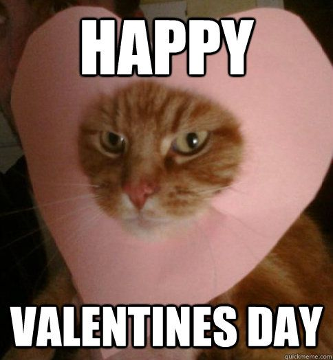 75 Funny Valentine Memes To Get You Through V Day Sayingimages Com Valentines Memes Funny Valentine Memes Valentines Day Memes