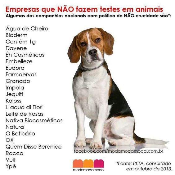 Não crueldade!
