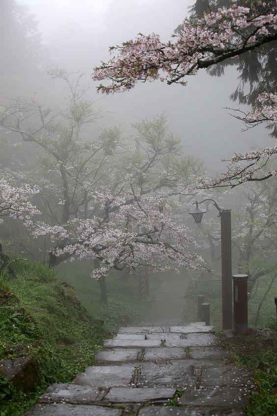 "interesting beautiful zen garden | Where are spirits? Or ""Tanuki""? | Places, Nature & Spaces ..."