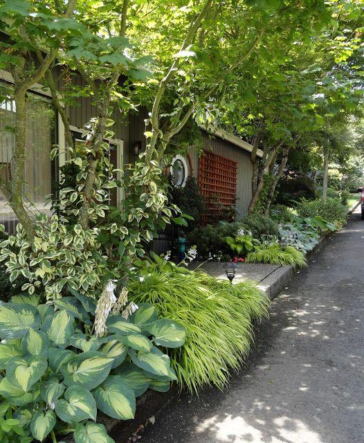 jardim perigo: Seguindo um palpite ... o Morgan & Laufenberg Garden