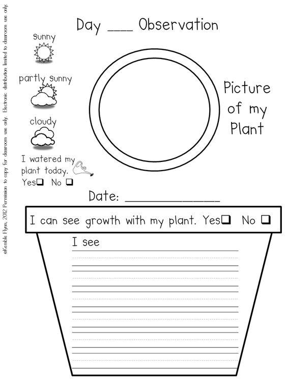 Classroom Design Journal Articles : Preschool plant journals template journal