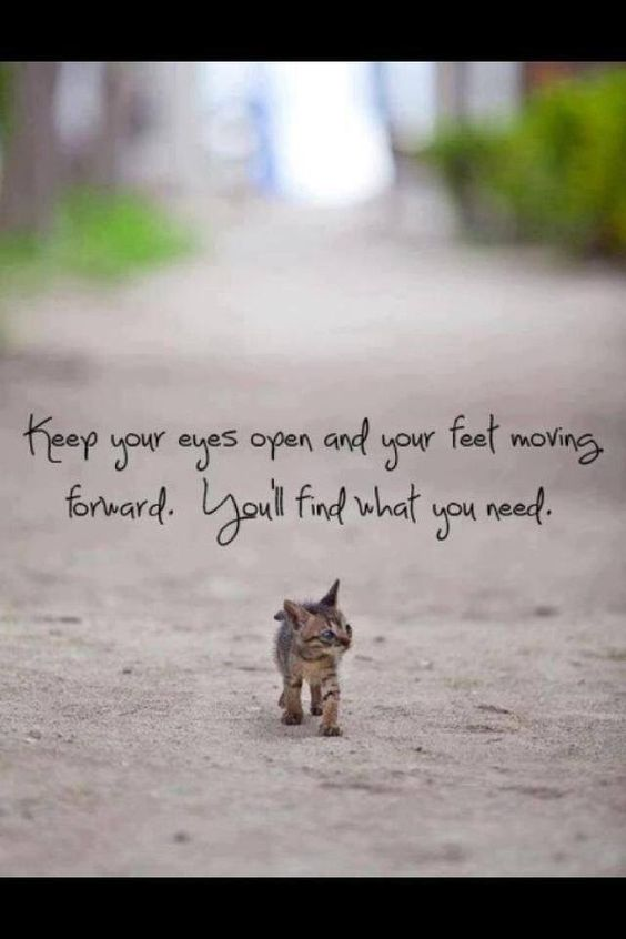 Keep your eyes open...