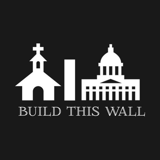 Check out this awesome 'Build+this+wall+instead+Mr+Trump' design on @TeePublic!