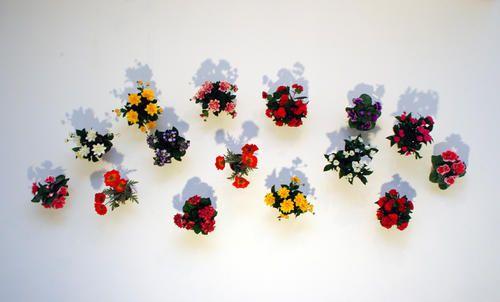 Hans-Peter Feldmann Fifteen Flowerpots