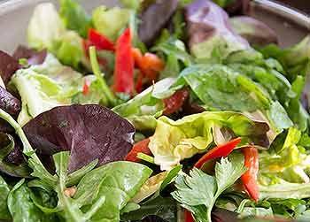 Salatsoßen Rezepte