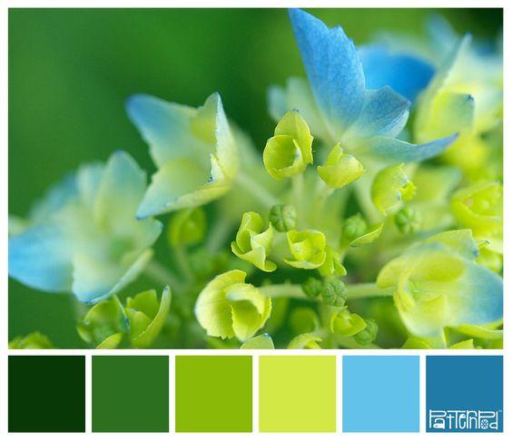 colores para zona madera