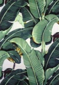 Hinson & Co. Martinique wallpaper, a.k.a., Blanche Devereaux's bedroom wallpaper.