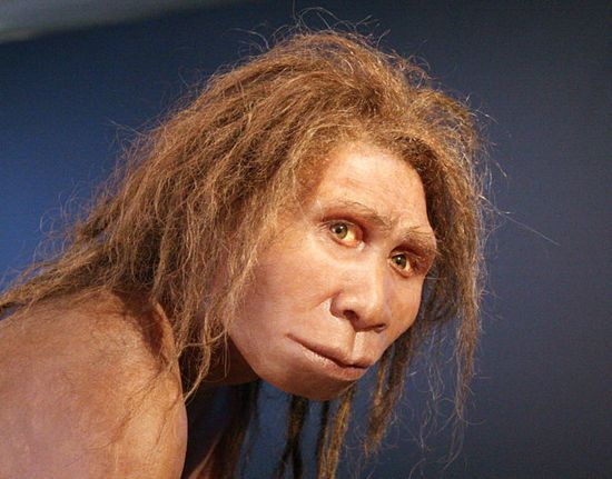 An artist's reconstruction of Homo georgicus. Image courtesy of Wikicommons