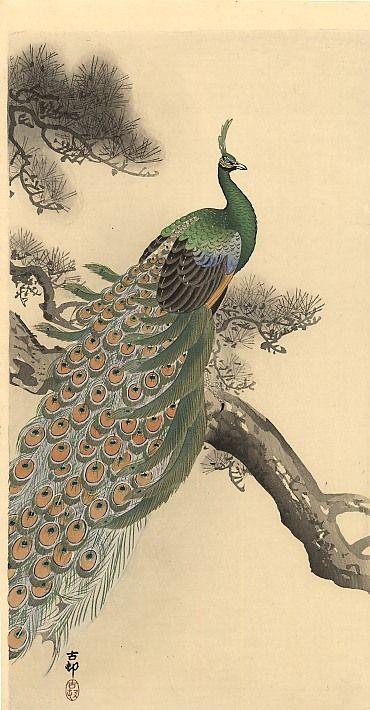 Green Peacock Bird Japanese Artist  Ohara Shoson Counted Cross Stitch Pattern