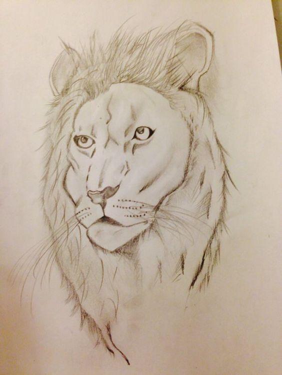Disegno di Luca ~ Leone #lion #animal #disegnoluca #drawing #beautiful #love Il re della savana!