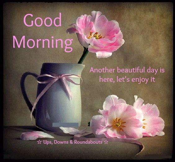 Good Morning. Another beautiful day is here, let's enjoy it!...