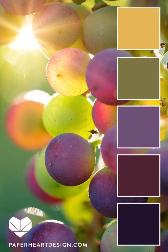 6 Sun Inspired Color Palettes - Sunset in grape vine. #color #colorpalette #colorscheme #grapes #weddingcolors #interiordesign #paintcolors #design #branding