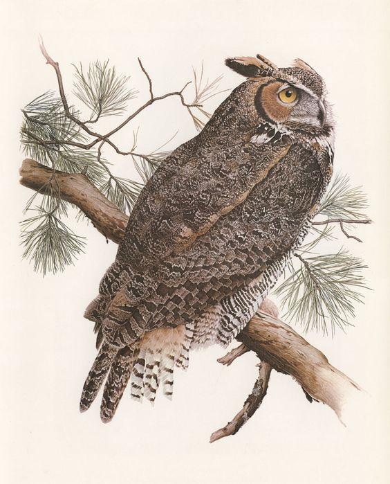 Canadian Wildlife Painter, Glen Loates