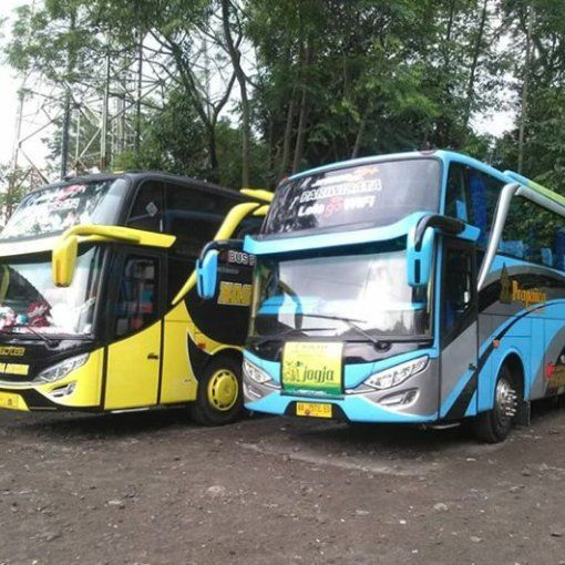 Bus Pariwisata Pariwisata Mobil