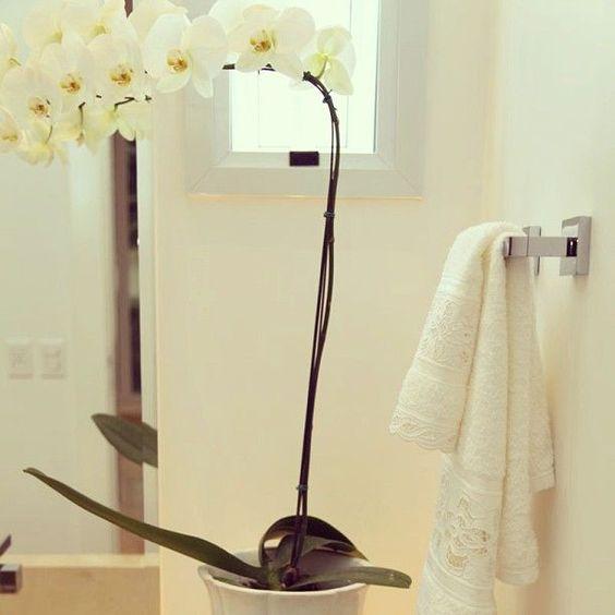 La humedad del baño, perfecta para las orquídeas. Decora tu hogar con orquídeas #decoración #orquídeas