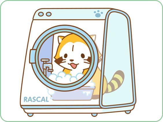 洗濯をするラスカル