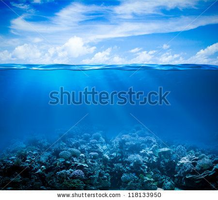 Underwater coral reef seabed view with horizon and water surface split by waterline - stock photo
