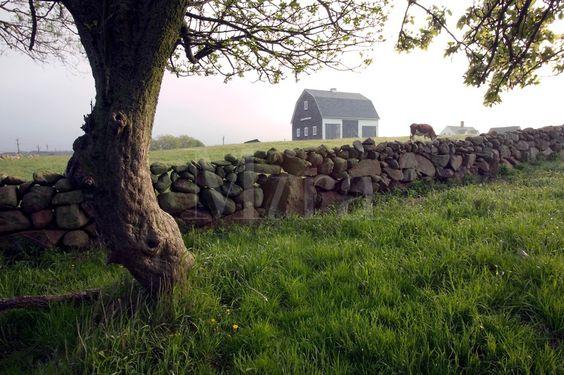 The Mitchell Farm - Block Island, Rhode Island: Barns Farm, Island Visitrhodeisland, Rhode Island, Mitchell Farm, Stone Walls Stones Rocks, Block Island Beachy, Farm Block,  Megalithic Structure, Island Rhode
