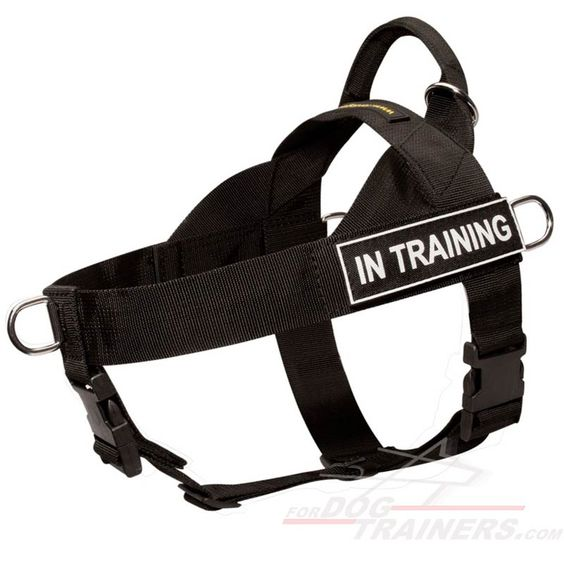 Super durable #nylon #harness $34.90