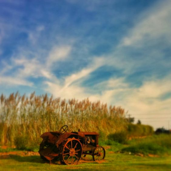 great picture of a old tractor