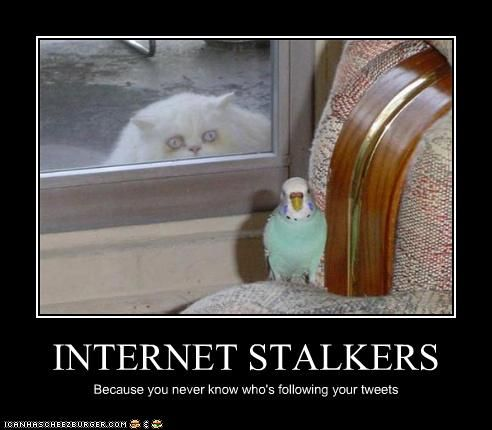 """I can not stand Stalkers. The people who say """"Oh yeah, I ..."""