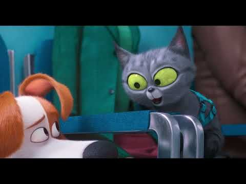 The Secret Life Of Pets 2 Trailers Tv Spots Clips Featurettes Images And Posters In 2020 Secret Life Of Pets Secret Life It Movie Cast