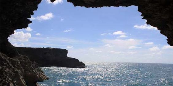 Carib Press says a trip to Barbados is not complete without a tour with Glory Tours :)