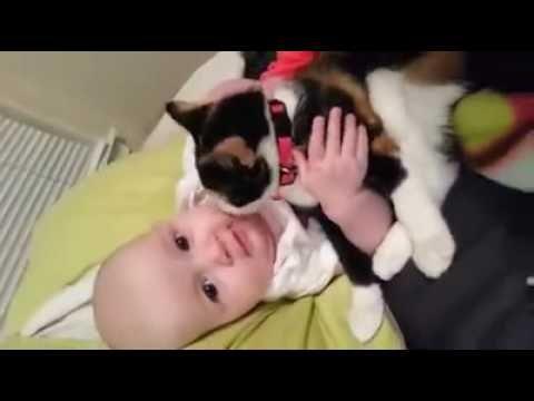 Baby Love With Cat https://www.youtube.com/watch?v=I5rRio2jHfw