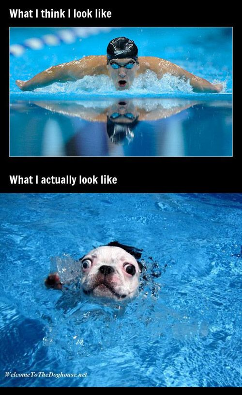 expectation vs reality...this is totally me swimming...haha.: