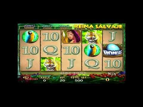 Slots casino hgtv