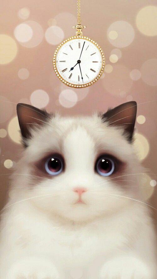 Pin De Farah N Em Fondos De Pantalla Gatinhos Fofos Desenhos De Animais Fofinhos Gatinhos