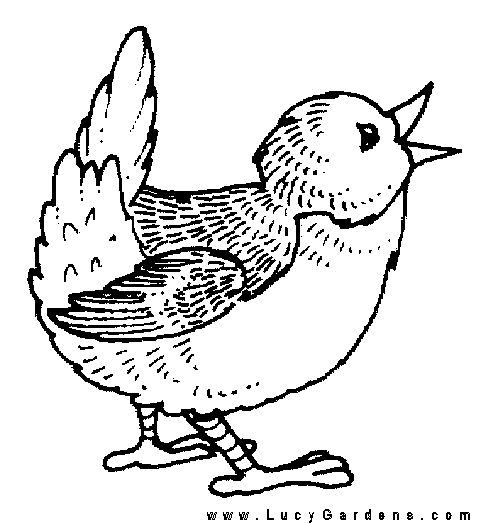 Gallery For gt Coloring Pages Of Baby Birds