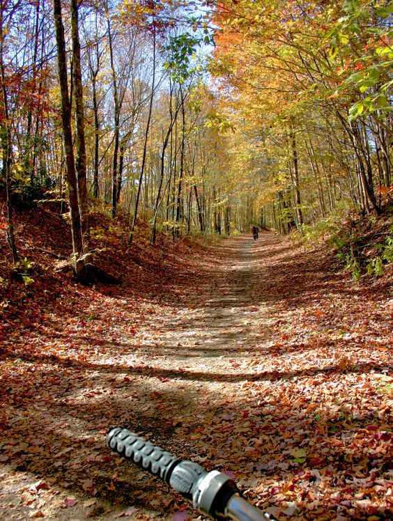 Bicycling along the Virginia Creeper Trail #travel frontiertraveler.com