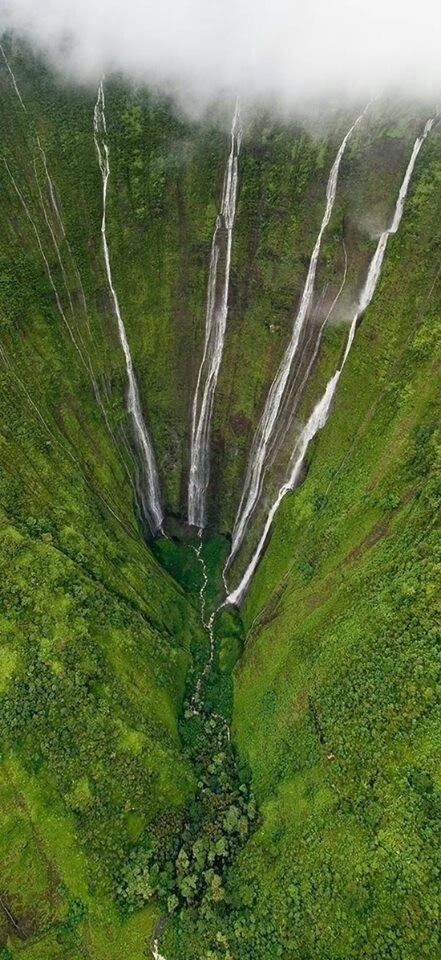 Mount Waialeale in Kauai...it's an old volcano and is the wettest place on earth...I was lucky enough to fly into this in a helicopter and it was raining!