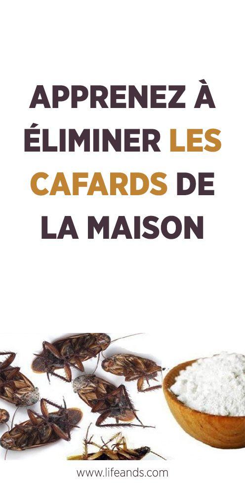 Apprenez A Eliminer Les Cafards De La Maison En 2020 Cafards Produits De Nettoyage Naturels Nettoyage Naturel