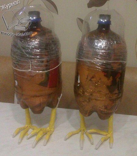 Raven de botellas de plástico y una clase maestra izolona