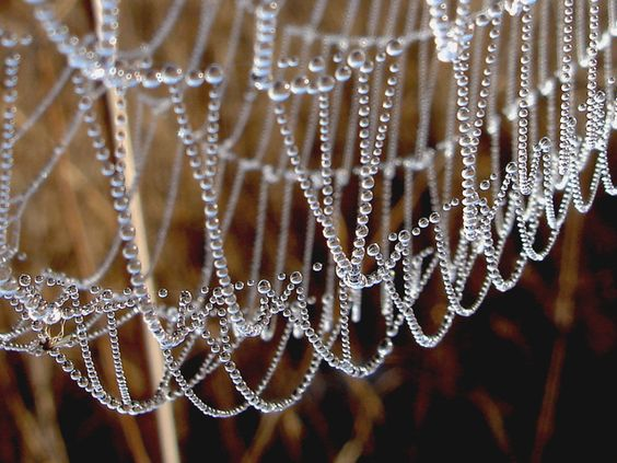 like strands of crystal beads