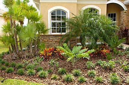Florida Friendly Landscaping Florida Plants Florida