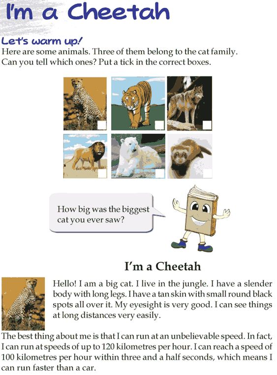 Reading comprehension test grade 4 pdf