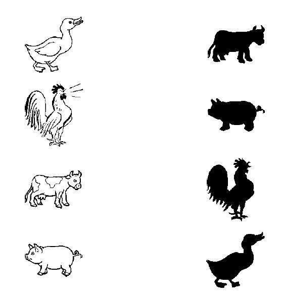 animal shadow match worksheets 7 term 1 2016 pinterest shadows worksheets and animals. Black Bedroom Furniture Sets. Home Design Ideas