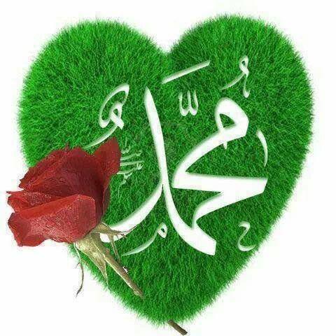 سجلوا حضوركم بالصلاة على محمد وآل محمد C211d4002104dc335f9a9da7f0ae3523