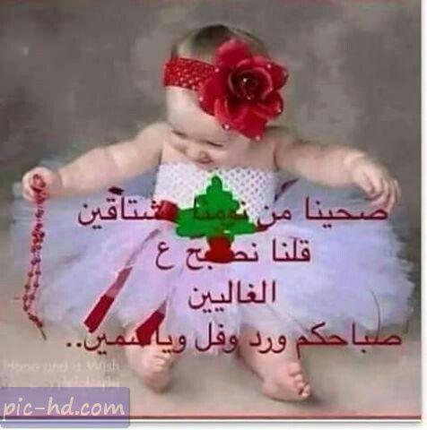 صور اطفال مكتوب عليها صباح الورد كلمات صباحية علي صور اطفال Holiday Decor App Pictures Good Morning Beautiful Images