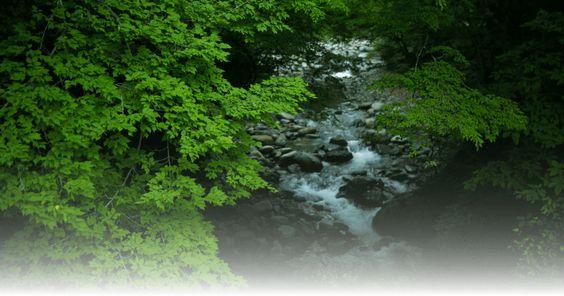 群馬県・谷川温泉 「別邸 仙寿庵」公式ホームページ