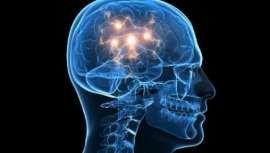 Alzheimer e Parkinson: exames garantem diagnóstico precoce