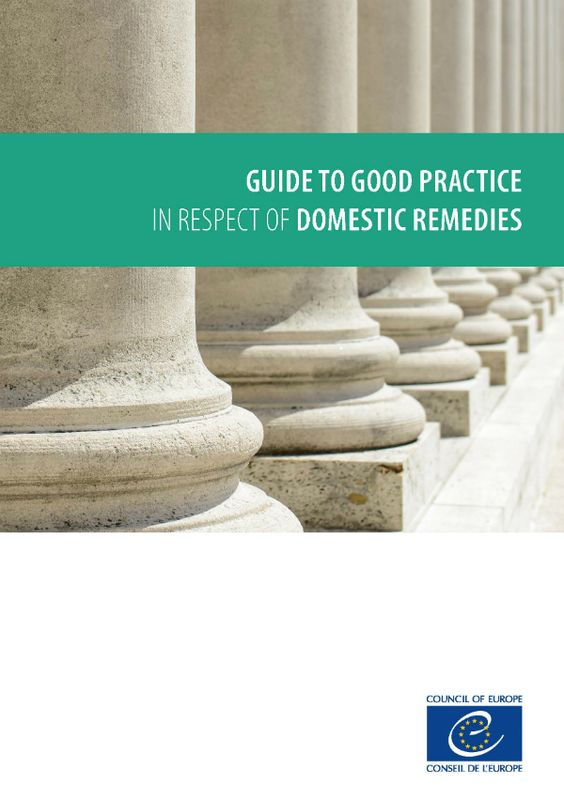 Guide to Good Practice in respect of Domestic Remedies