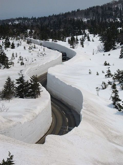 Giant snow walls on Hakkoda Walk, Japan (by Mihai Japan).